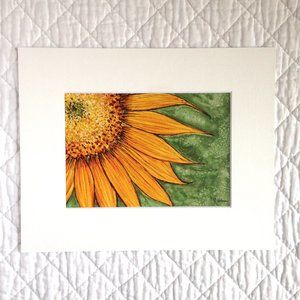 """Sunflower"" 5x7 Artwork Print With Mat"